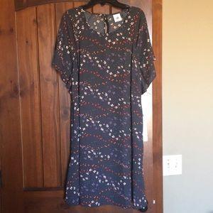 cabi dress